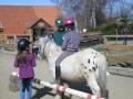 2012-04-02-18-hippolini-aufsteigen